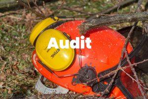 Audit Delta Formations Gardoises